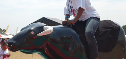 Mechanical Rodeo Bull Hire - Gauteng